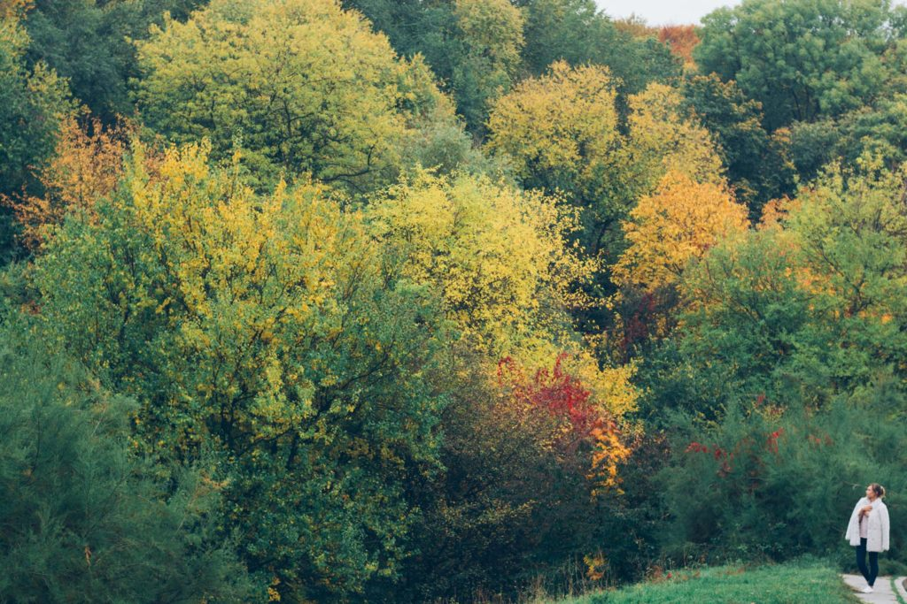 Осенняя фотосессия в Киеве Ботанический сад