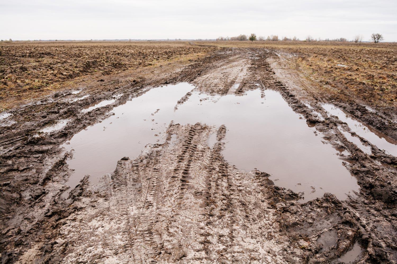 Черниговская область дорога